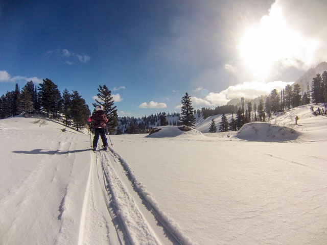 Skiing the trees down from Needles Lodge with the kids.