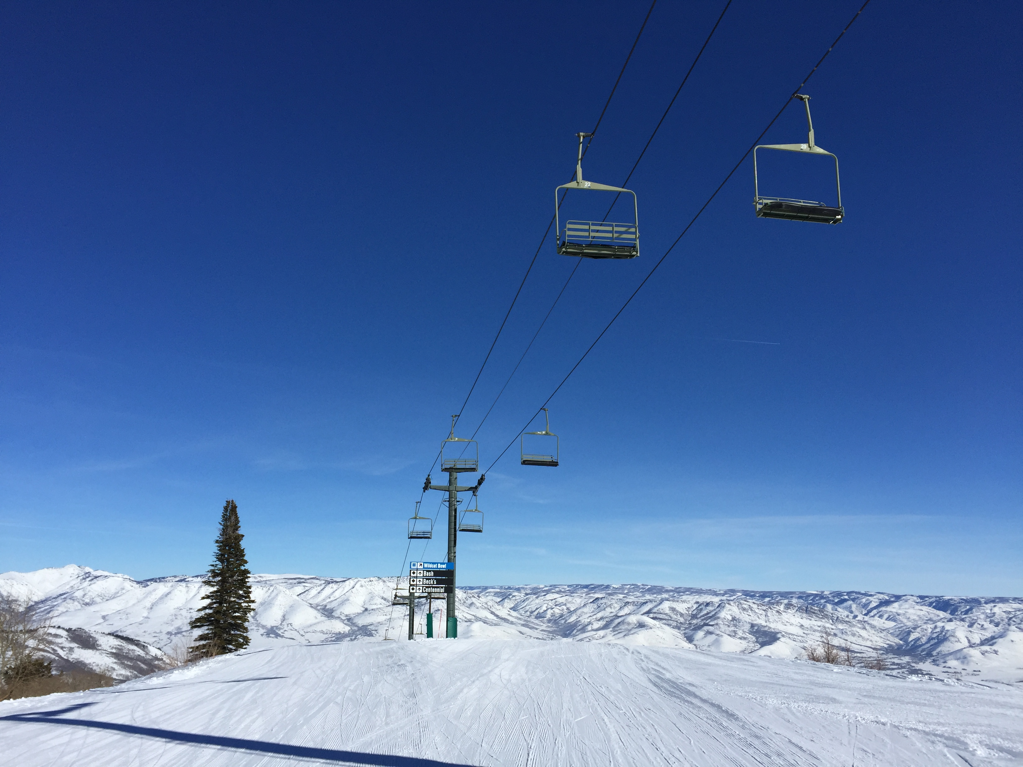 Snowbasin Resort Announces New High Speed Wildcat Chairlift for