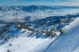 Discover Snowbasin Resort category image.