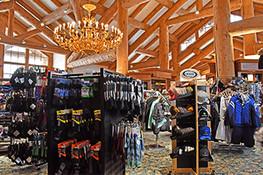 Shopping  category image.