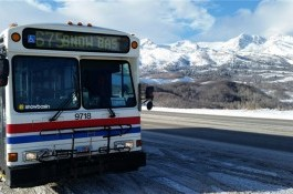 UTA Ski Bus Service category image.